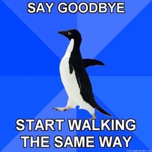 Socially-Awkward-Penguin-15