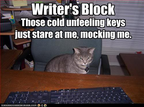 funny-pictures-cat-has-writers-bloc
